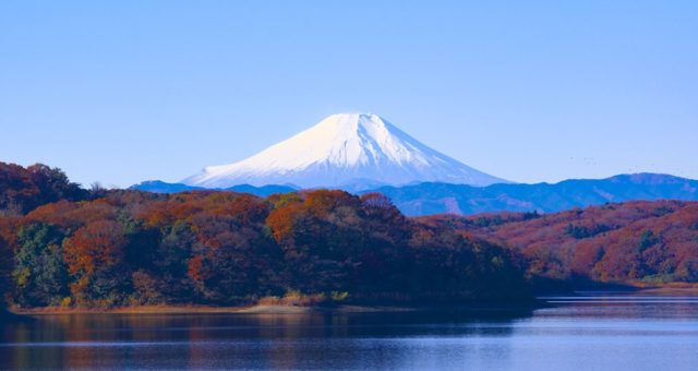 DID YOU KNOW… 10 FUN FACTS ABOUT FUJI! 🇯🇵 🌍